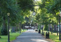 Warwickshire District Green Spaces newsletter- July
