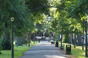 Warwickshire District Green Spaces newsletter- July